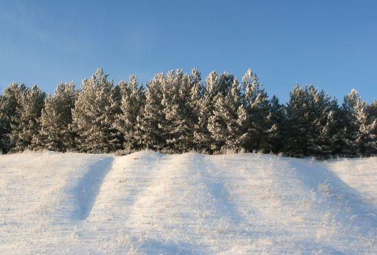 Vacanța de iarnă